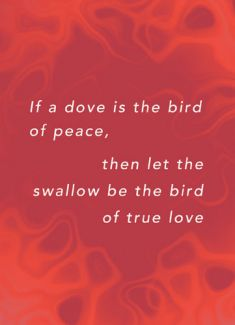 If a dove is the bird of peace, then let the swallow be the bird of true love