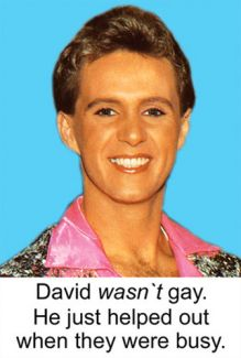 David wasn't gay. He just helped out when they were busy