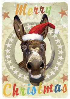 Merry Christmas Donkey x 5 Pack