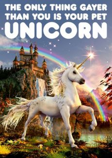 Your Pet Unicorn