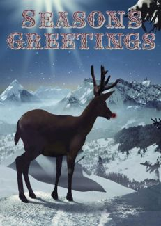 Seasons Greetings Rudolf x 5 Pack