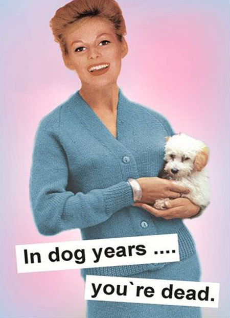 In dog years... you're dead.
